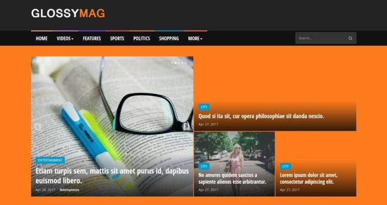 magazine-blogger-theme