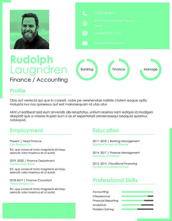 print finance resume template