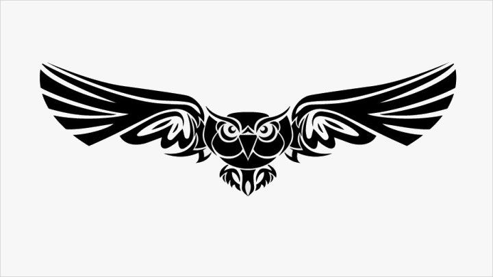 tribal-owl