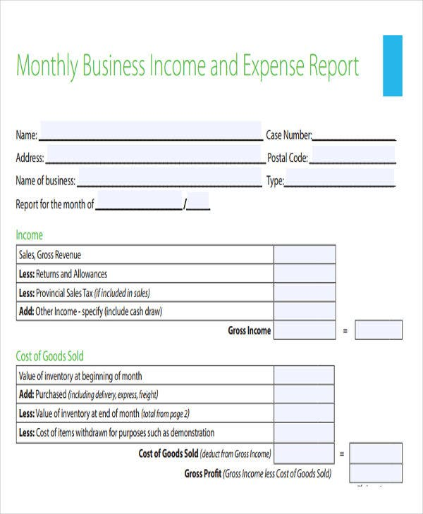 monthly income and expense report1