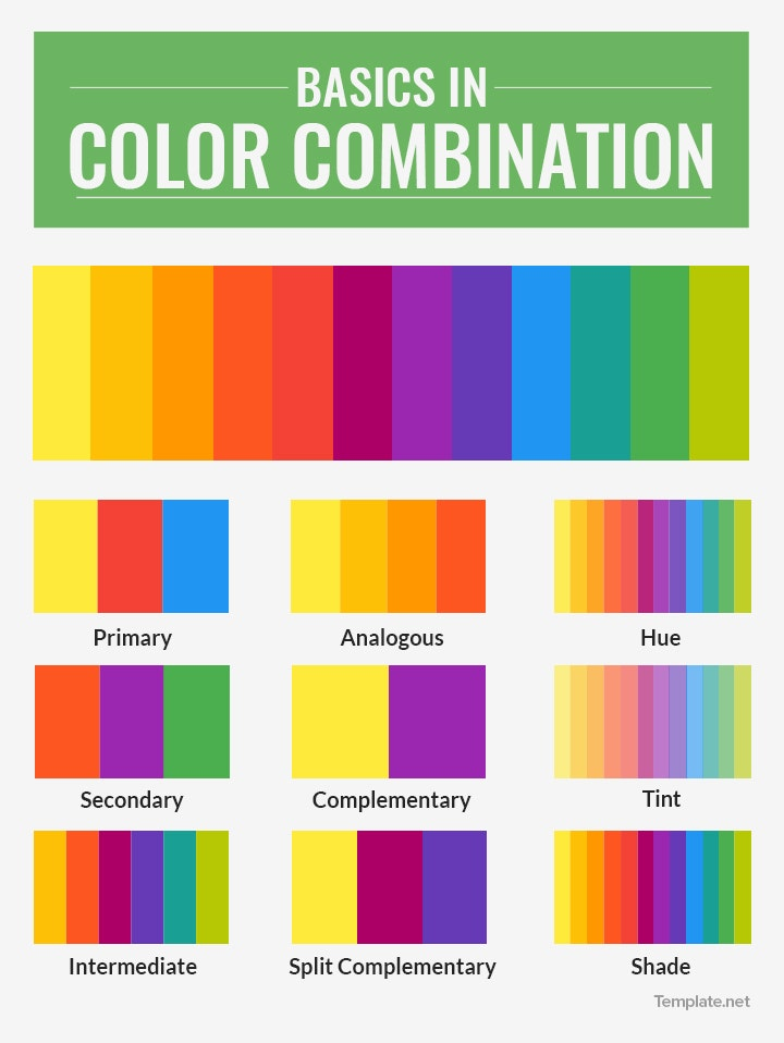 basics in color and color combinations