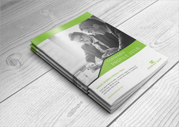 business profile brochure template