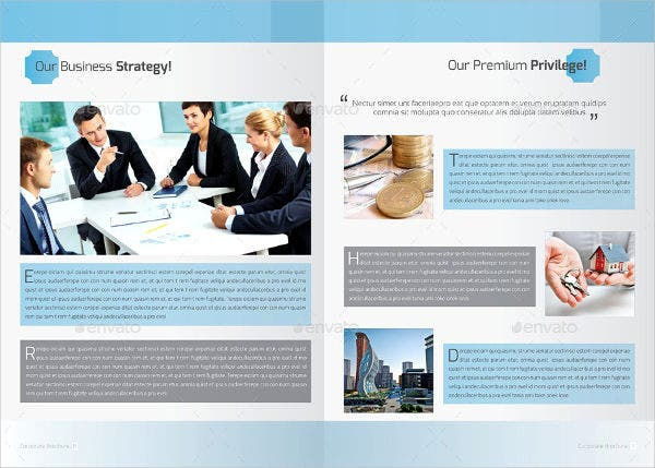 Marketing Strategy Company Brochure
