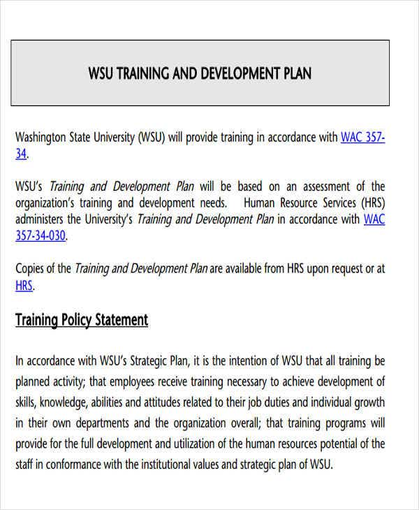 training and development implementation plan1