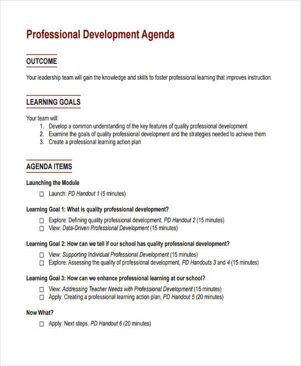 Professional Development Example