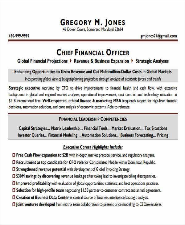 project chief finance officer resume