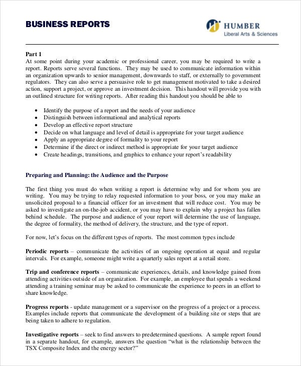 Formal Business Report  Business Reporting Templates