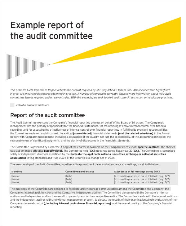 audit committee report