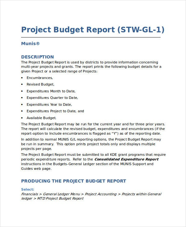 project budget report