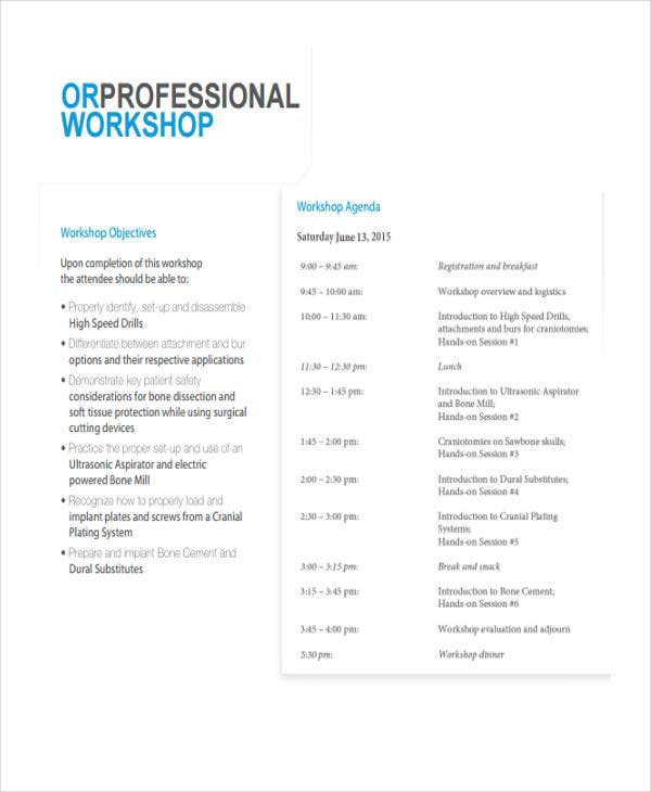 Professional Workshop Agenda