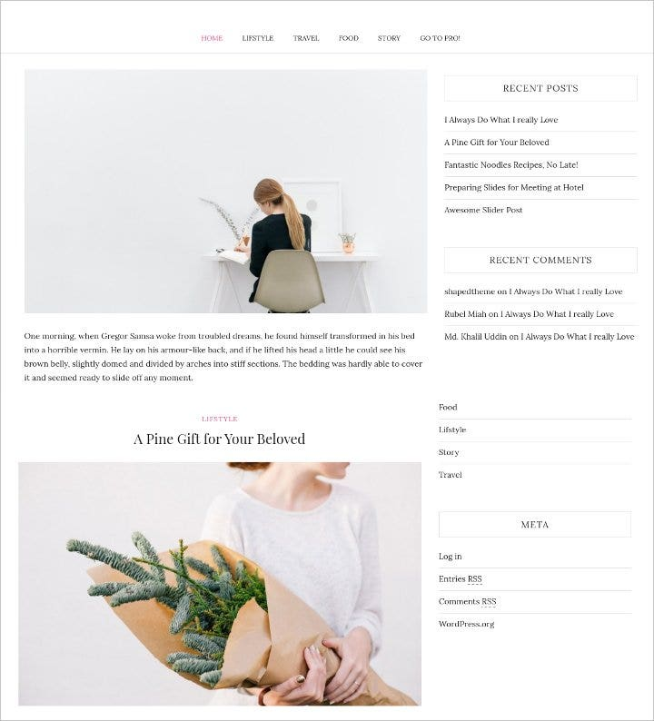 elegant wordpress blog theme1