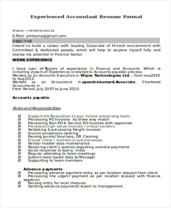 Experienced Accountant Format Resume