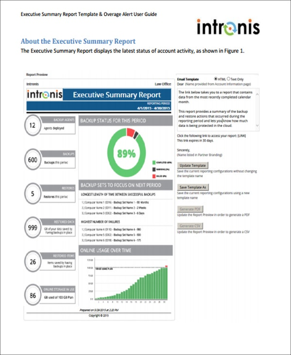 11 Sample Executive Report Formats – 1 Page Executive Summary Template
