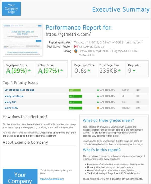Performance Report Templates   Free Sample Example Format