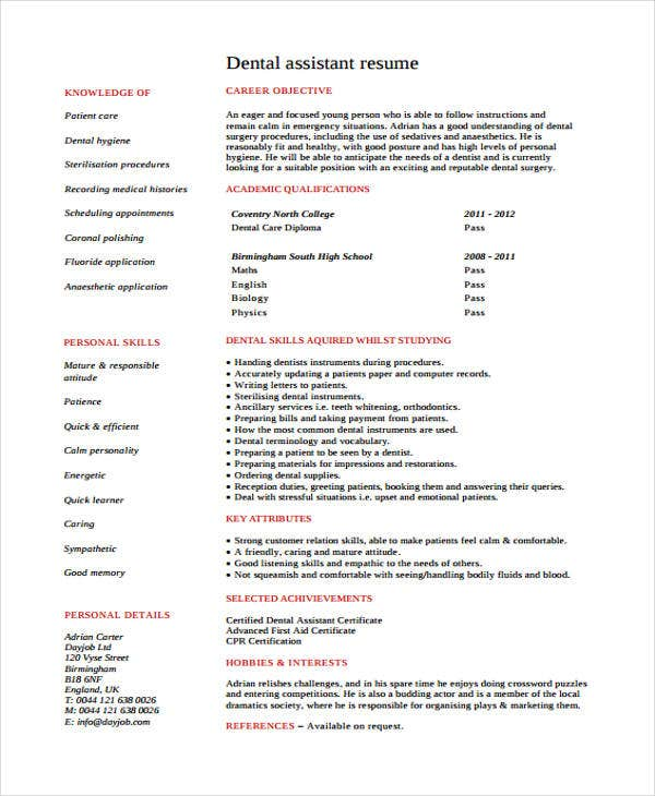 8 dentist curriculum vitae templates pdf doc free premium