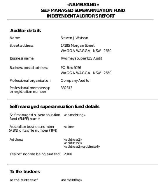 audit report2