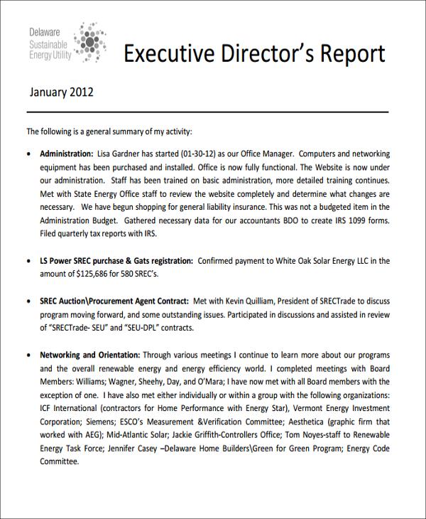 director report