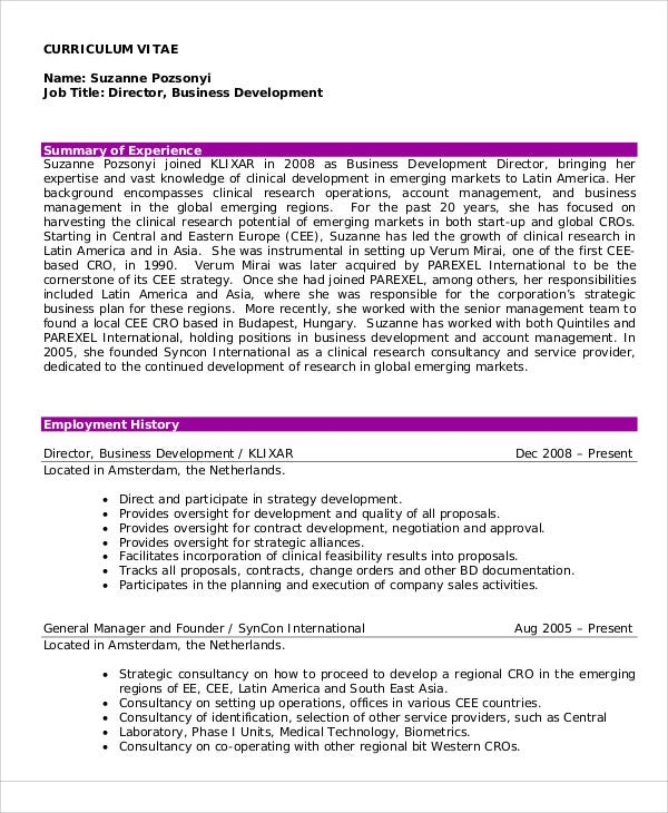example of director curriculum vitae