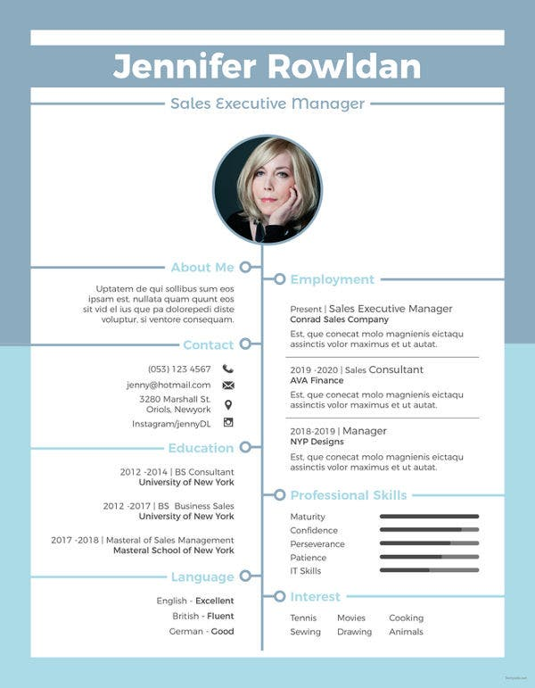 9+ Sales Executive Resume Templates - PDF, DOC | Free ...