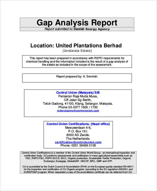 Gap Analysis Audit Report