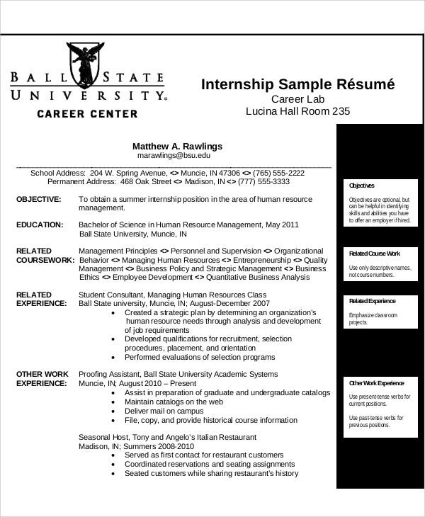10 Sample Internship Curriculum Vitae Templates Pdf Doc Free