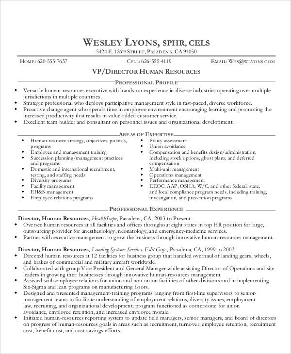 10 director curriculum vitae free sample example