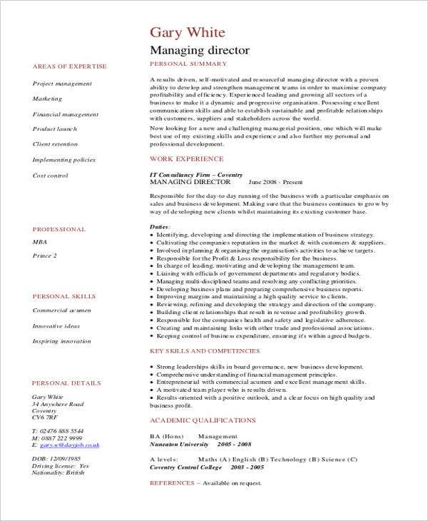 director curriculum vitae templates 6 free word pdf format