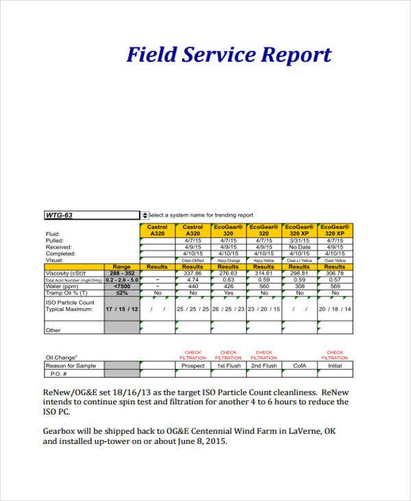 Service Report Templates  Free Sample Example Format