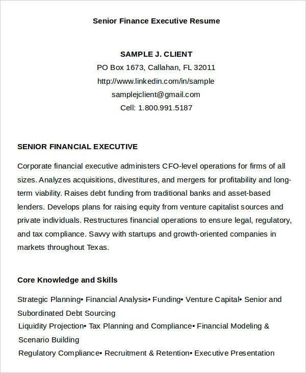 Finance Executive Resumes  Financial Modeling Resume