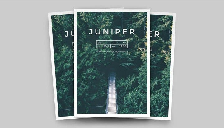 Juniper Magazine Cover