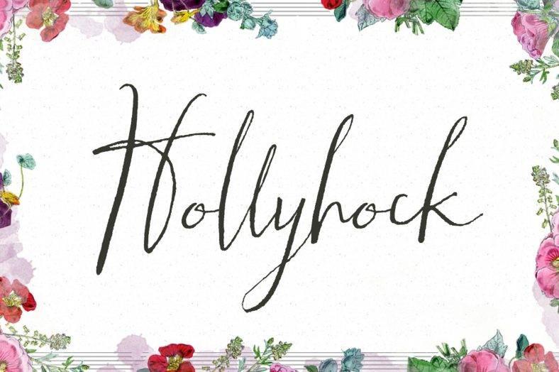 7 hollyhock 788x524
