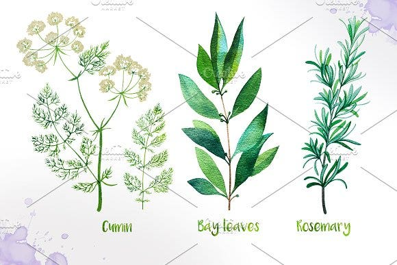 9 herbs