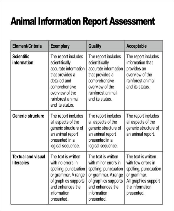 9+ Animal Report Templates - Word, Pdf | Free & Premium Templates