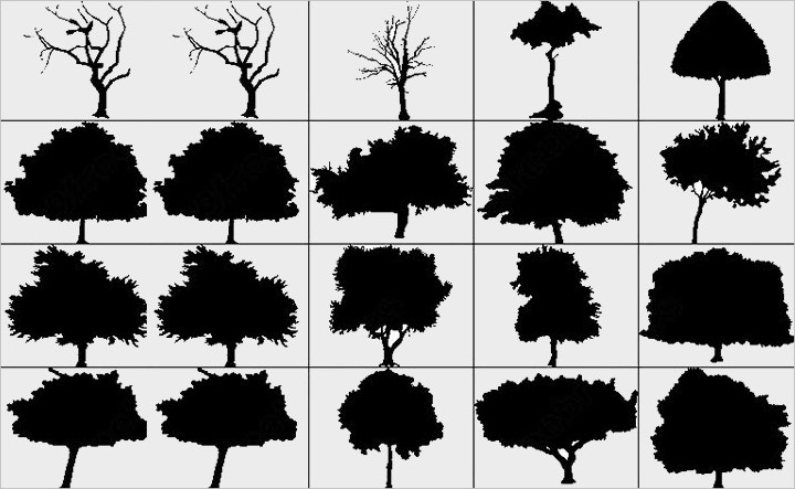 big-silhouettes-tree-brush