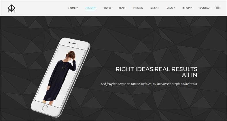 commercial drupal theme 788x422