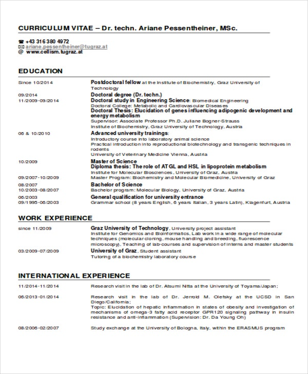 International-Experience Sample Curriculum Vitae Example on for accountant partner, fresh graduate, for chiropractors, offer letter, medical student, for administrative assistant, latest format, cover letter,