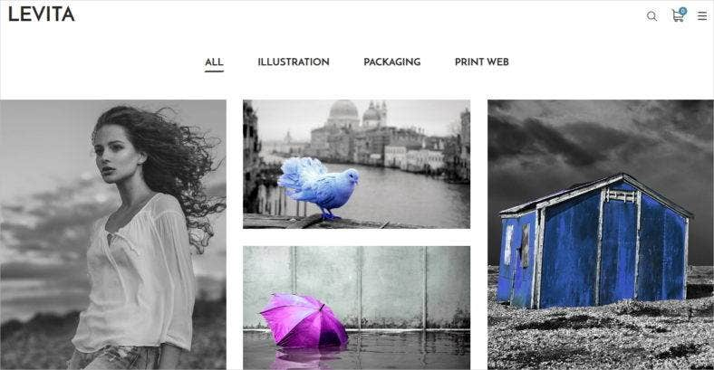 levita-creative-photography-wordpress