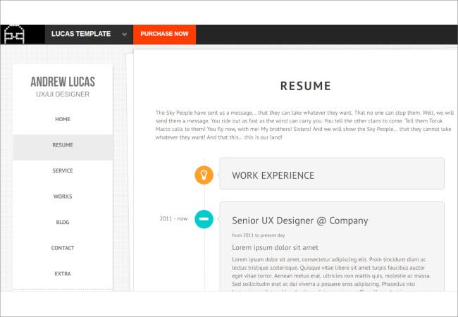 onepage personal resume template1