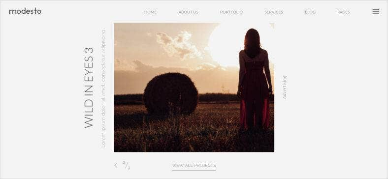 photography drupal theme 788x364
