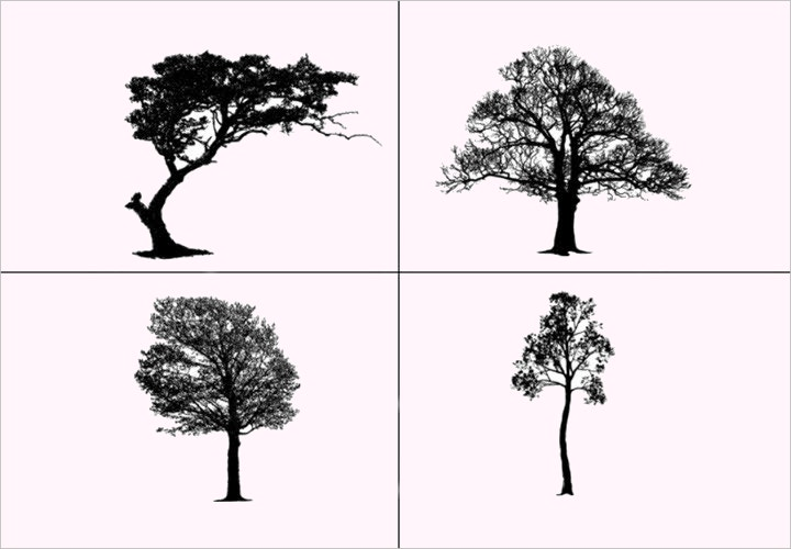 photoshop-tree-brushes