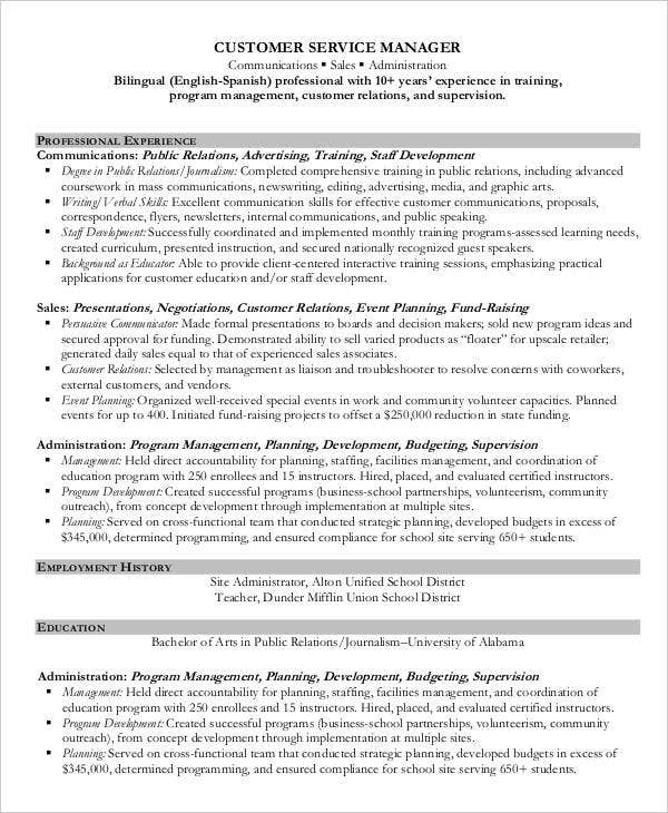 Professional Resume Format Example