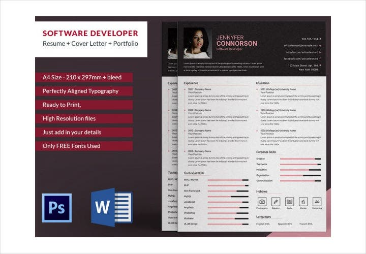 Professional Software Developer Resume Template