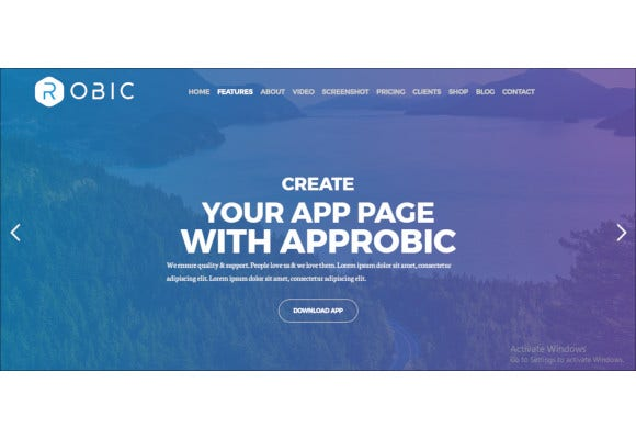 robic wordpress landing page theme
