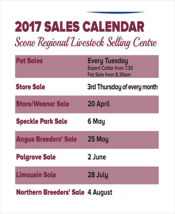 Sales Calendar Templates  Free Sample Example Format Download