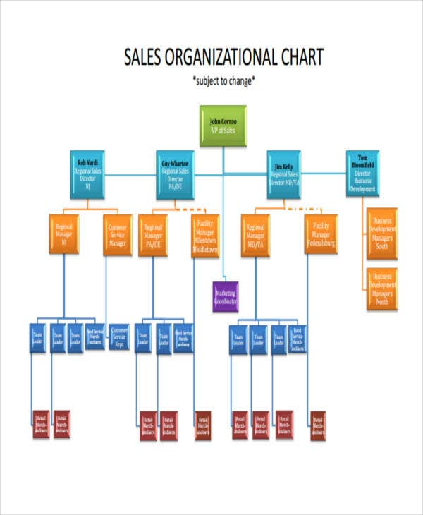 sales hierarchy
