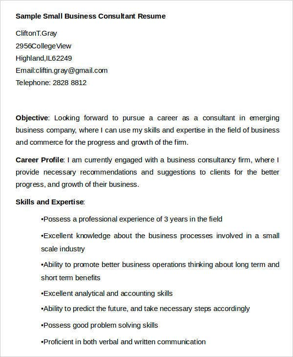 Small Business Consultant Resume in Word