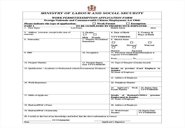 work permit application form sample