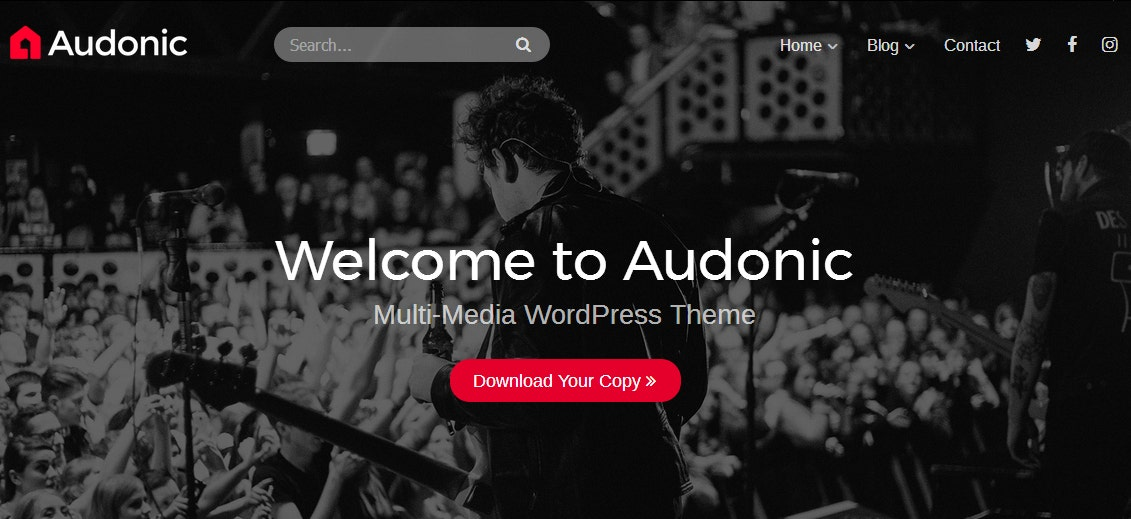 11+ Audio and Podcast Website Themes - Music, Video, Vlog
