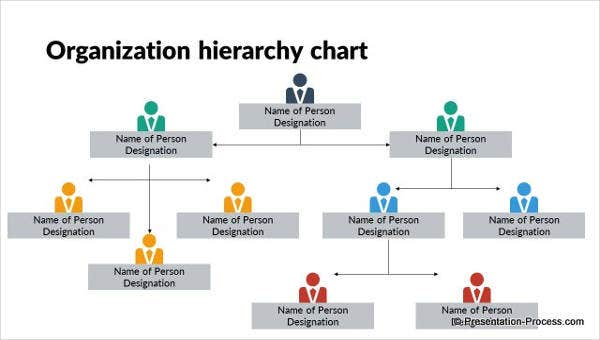 Hierarchy Chart Template from images.template.net