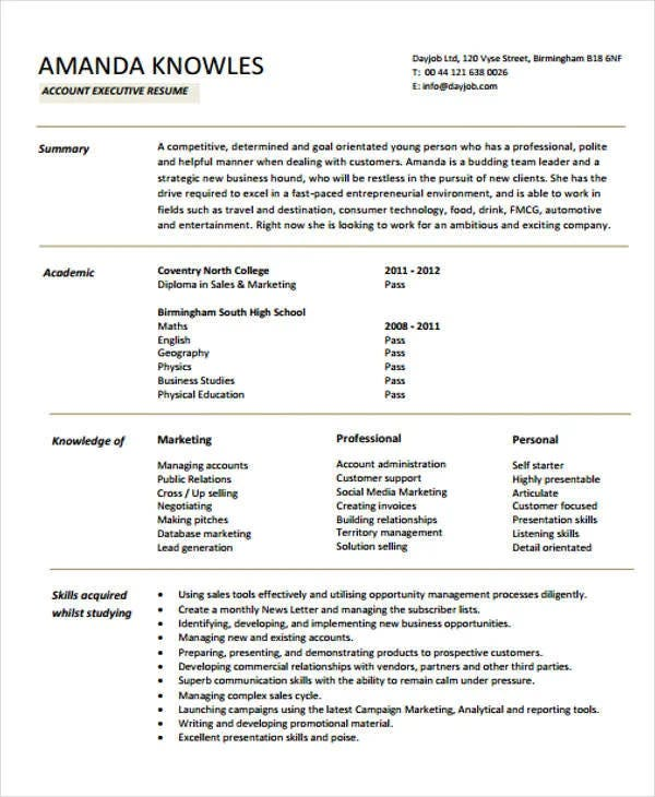 accounts executive cv